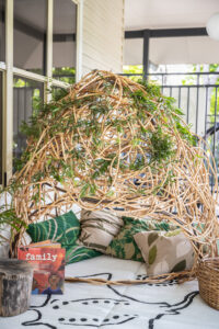 Prior Street Child Care Centre - Birdcage Cubby